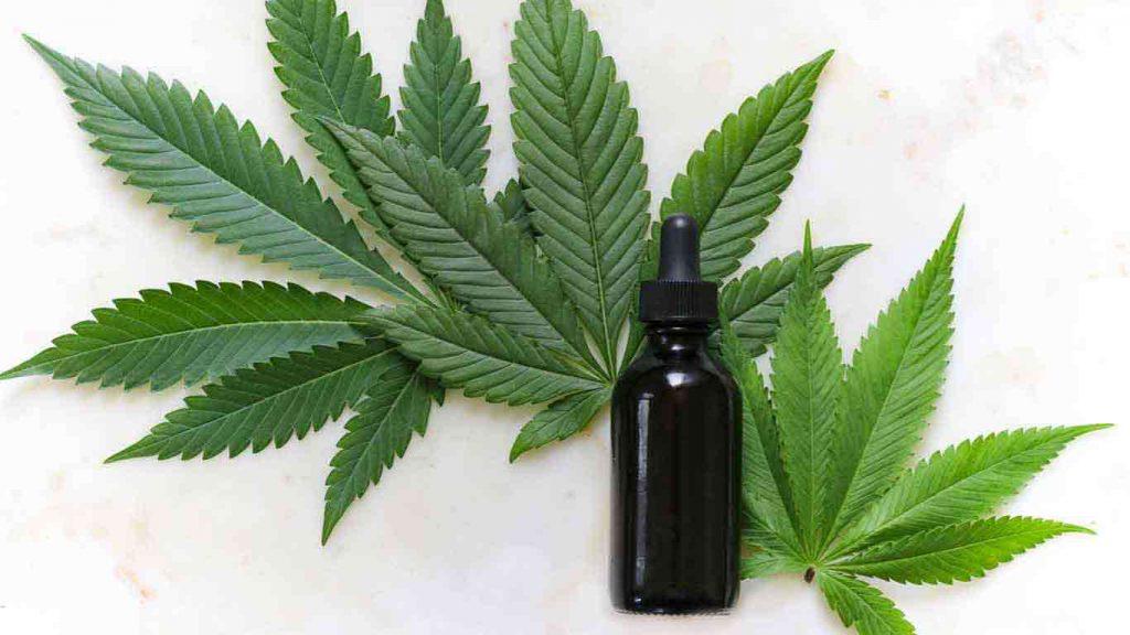 Cannabis Training School